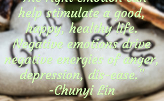 The Right Emotion quote image