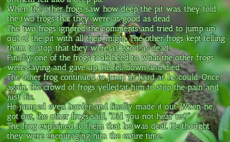 The Frog Story About Encouragement Quote Image