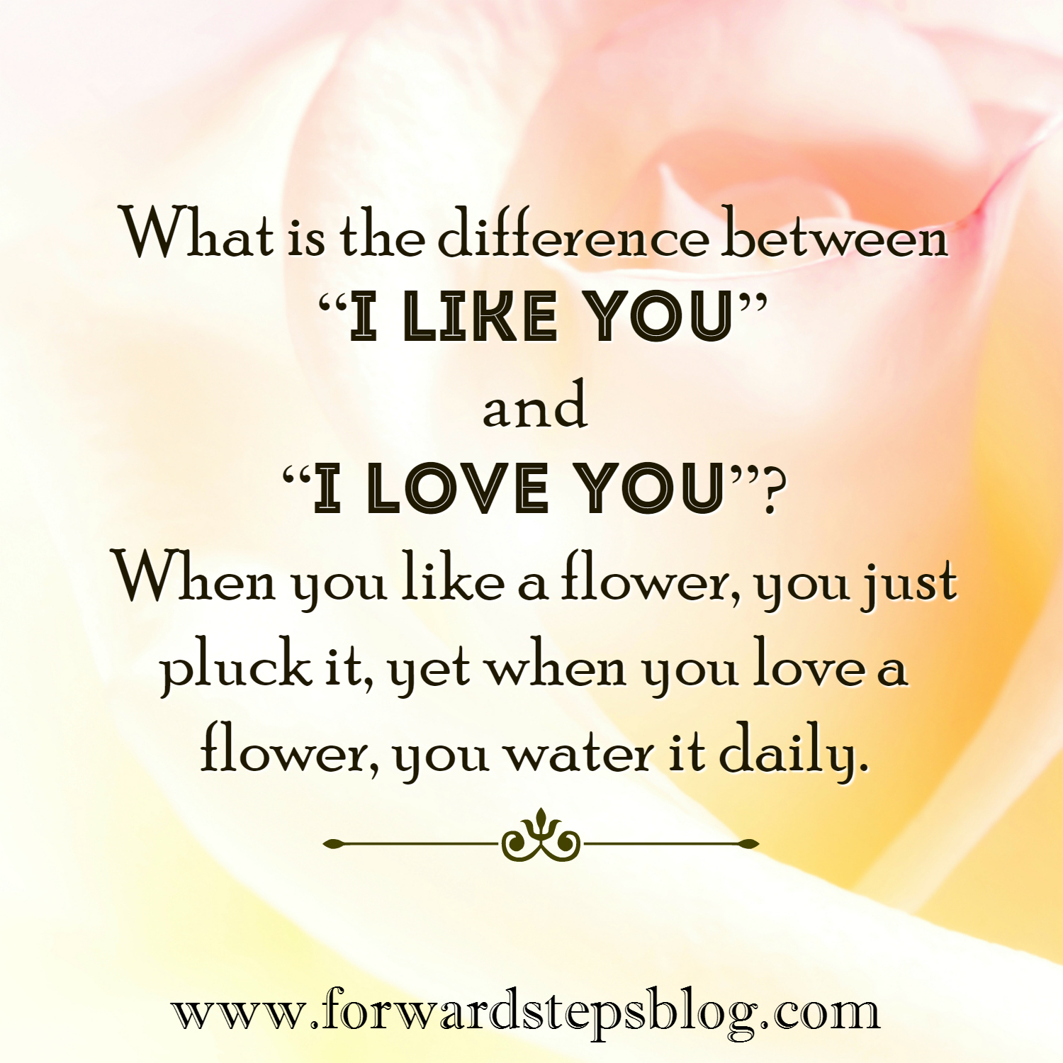 I like you I love you quote image
